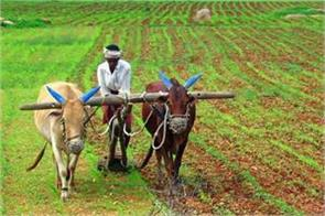 food  petroleum and fertilizer subsidy increased by 15 percent