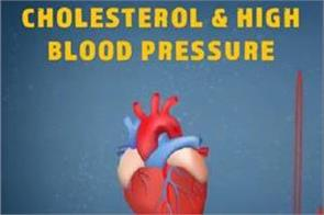 natural remedy for cholesterol  high blood pressure