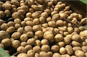 increase the prices of potato relief to farmers