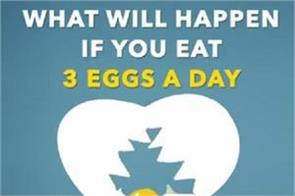 what will happen if you eat 3 eggs a day