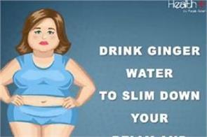 drink ginger water to slim down your belly and thighs fat
