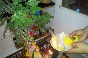 chant tulsi mantra divine powers will become home guard