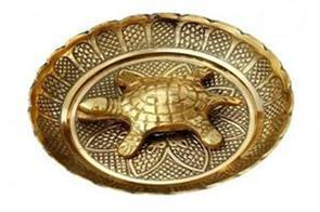 according to fengshui metal turtle brought money and success in home