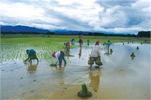 fiercely monsoon farmers will get benefits
