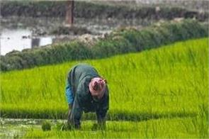 government to improve the condition of farmers