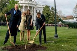 plant of emmanuel macron gifted to trump disappeared