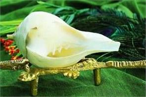 establishment of conch in home