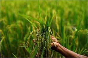 1 5 times msp on kharif crops will be decided soon