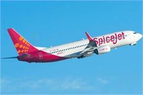 spicejet s profit up 5 2