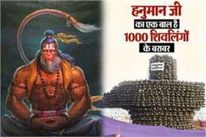 hanuman ji one hair equal to 1000 shivlinga