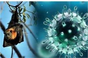 jk govt is in deep slumber about nipah virus