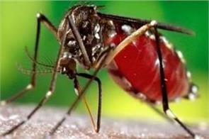 officers preparing for dealing with dengue