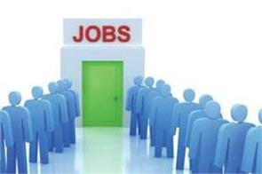 vacancy in 700 posts in tpsc