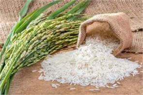 rice exports fall by up to 10 million tonnes