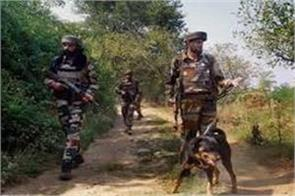 search operation in bandipora continue