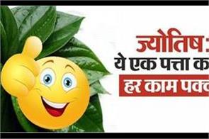 jyotish upay of paan leaf in hindi