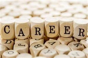 career in it field they are the best option