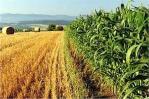 jharkhand will send farmers to israel to learn new agriculture information