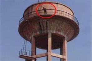 baghpat girlfriend on water tank demanded for marriage