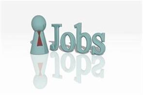 sai  job salary candidate