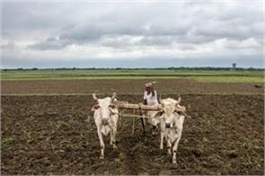 government will make new arrangements soon to ensure msp for farmers