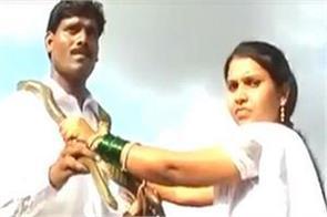 marriage groom bride snake video viral