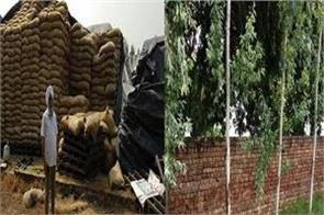 hangers warehouse wheat mortgage punjab news