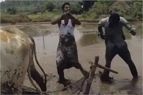 video 2 indian farmers won kiki challenge