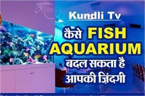 kundli tv aquarium