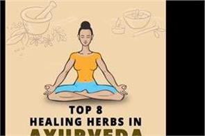 top 8 healing herbs in ayurveda