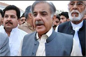 shahbaz khan s son nominated as punjab s chief ministerial candidate