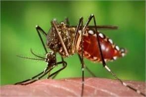 30 people die from dengue keep your attention