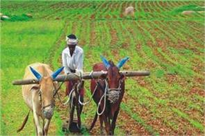 google can make indian farmers digitally aware