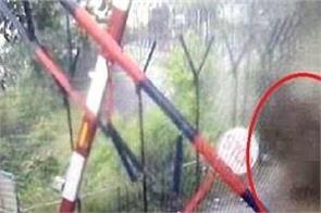bhakra dam in danger