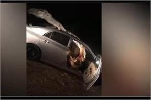 horrible live accident of car  camel goes viral