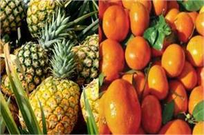 canada opened door of pineapple and kinnu import