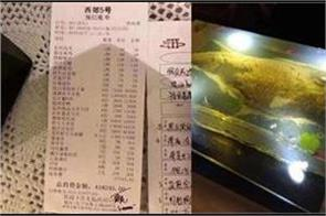 dubai prince pay bill of 42 lacs rs for dinner in china