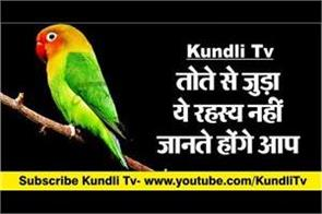 vastu tips related to parrot