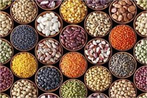 support price sold down 35 lentils