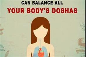 herbs and spices that can balance all your body s doshas