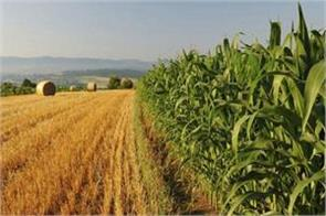 cabinet approval for agreements between india and egypt in agriculture sector