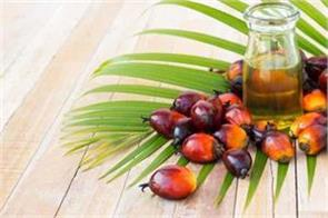 india s cooking oil imports rise 11 in august