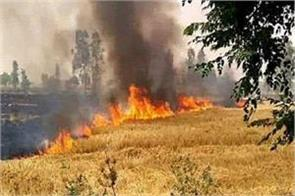 keep an eye those who burn 8000 nodal officers in punjab