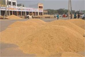 farmer brother give focus paddy millet procurement will start from this day