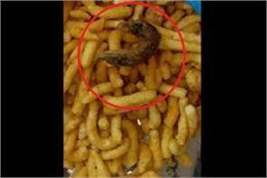 fried lizard in the packet of salted
