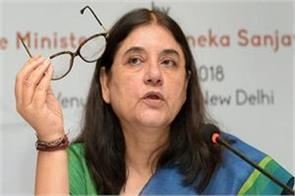 maneka expressed gratitude towards modi in anganwadi case