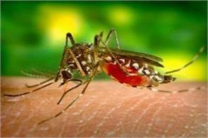 by the end of the year there may be a rise in the case of dengue