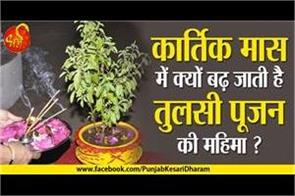 importance of tulsi worship in kartik month