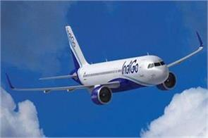 indigo s two pilots stopped flying