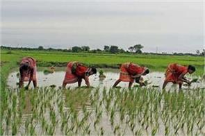 pm kisan samman nidhi even previous beneficiaries are not getting the money